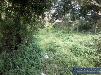 Tanah 2.2 Ha Di Jl. Raya Parung  Bogor