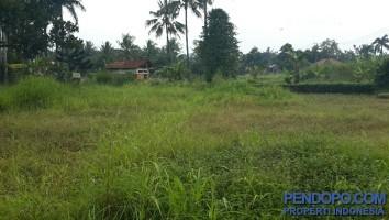 Tanah 1 Ha Di Ragamukti Tajurhalang Bogor